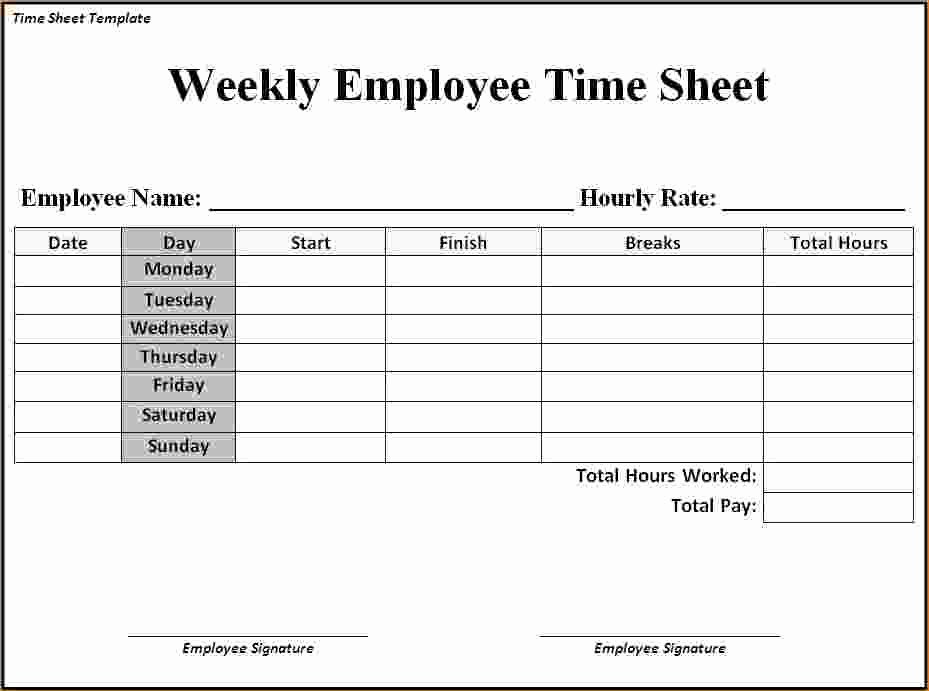 2 Week Timesheet Beautiful Timesheet Template