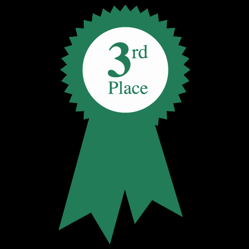 2nd Place Ribbon Png Luxury 2nd Place Ribbon Clipart Png and Cliparts for Free