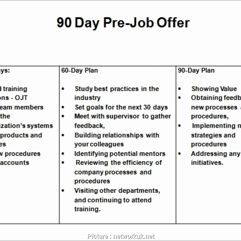 30 60 90 Day Sales Plan Template Free Awesome 10 30 60 90 Day Plan Sales Manager Example