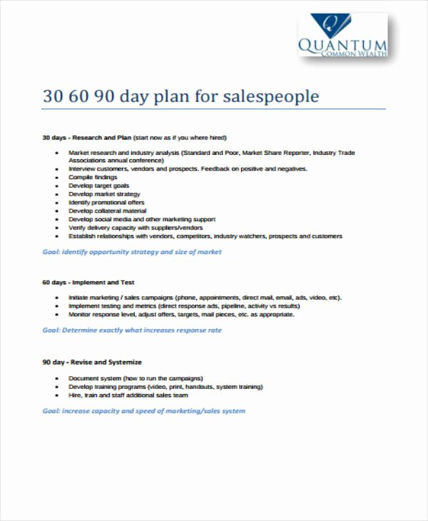 30 60 90 Day Sales Plan Template Free Luxury 11 30 60 90 Sales Plan Templates Pdf Word