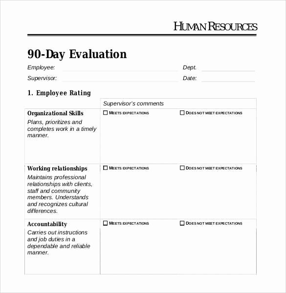 90 Day Probationary Period form Unique 41 Sample Employee Evaluation forms to Download