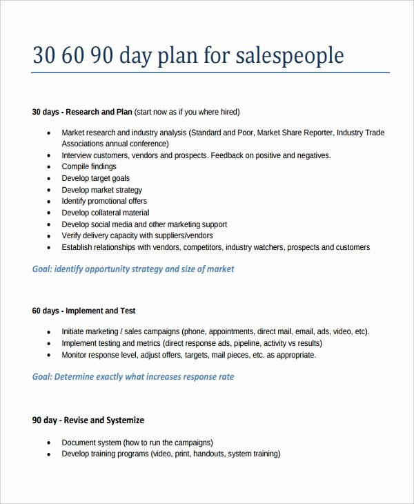 90 Day Sales Plan Example Unique 22 30 60 90 Day Action Plan Templates Free Pdf Word