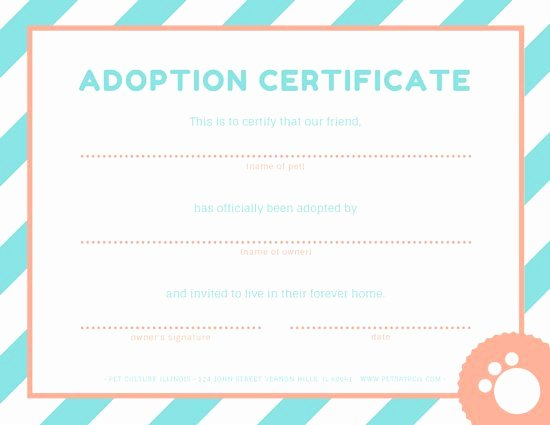 Adopt A Pet Certificate Template Awesome Pet Adoption Certificate Templates by Canva