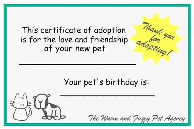 Adopt A Pet Certificate Template Beautiful Adoption Certificates