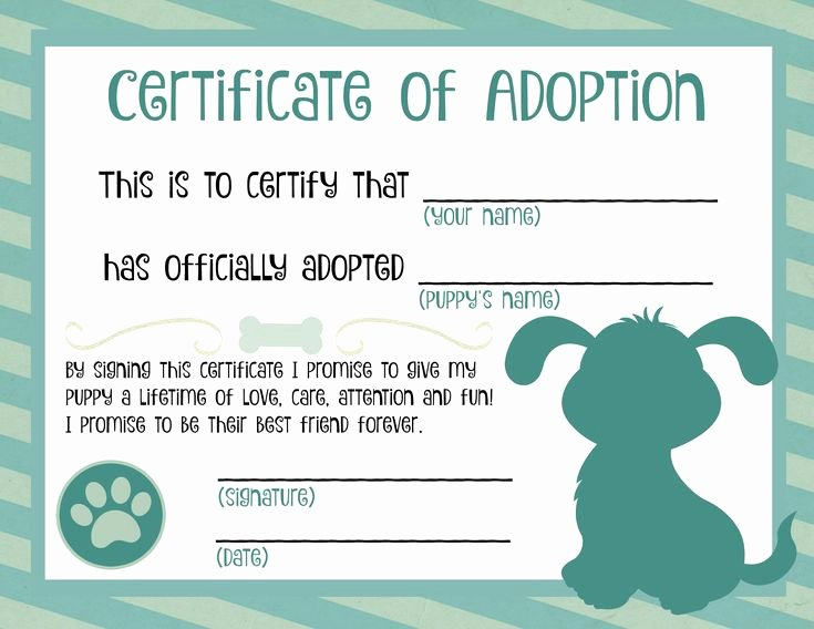 Adopt A Pet Certificate Template Lovely Puppy Adoption Certificate