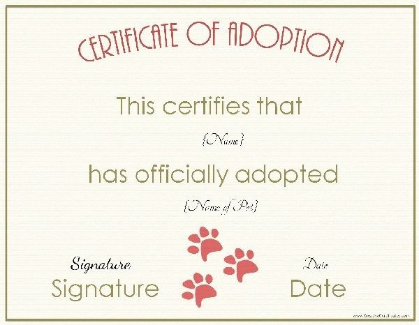 Adopt A Pet Certificate Template New Pin by Tuesday D Eon On Pets Life 3 Pinterest