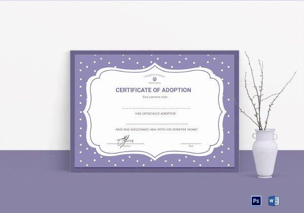 Adoption Certificate Template Word Fresh 36 Blank Certificate Template Free Psd Vector Eps Ai