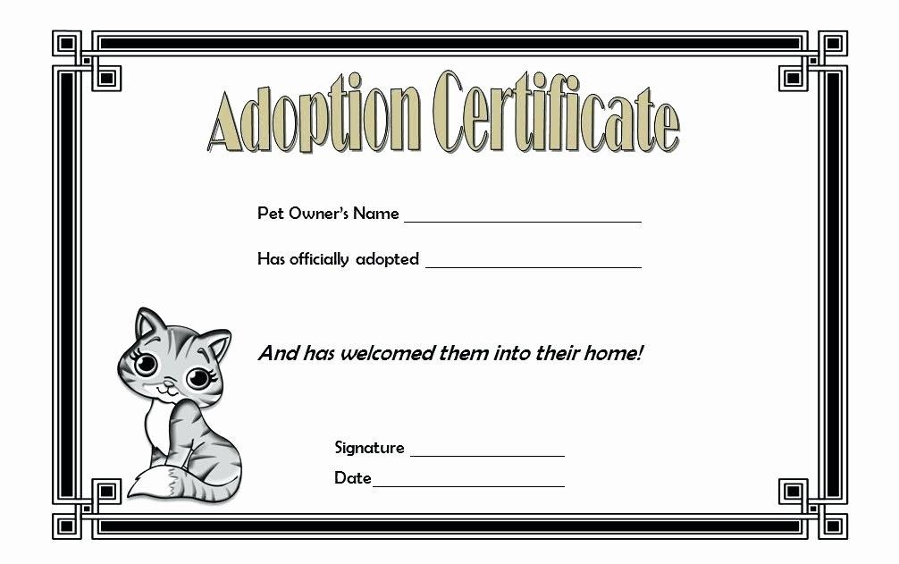 Adoption Certificate Template Word Lovely Pet Birth Certificate Template – Stagingusasportfo