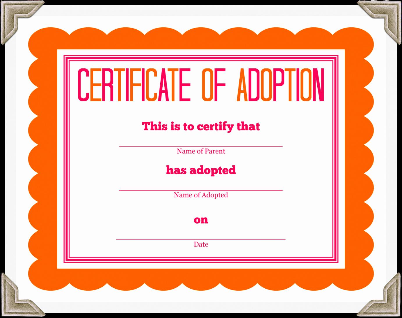 Adoption Certificate Template Word Luxury Adoption Docs Certificate Templates Printable