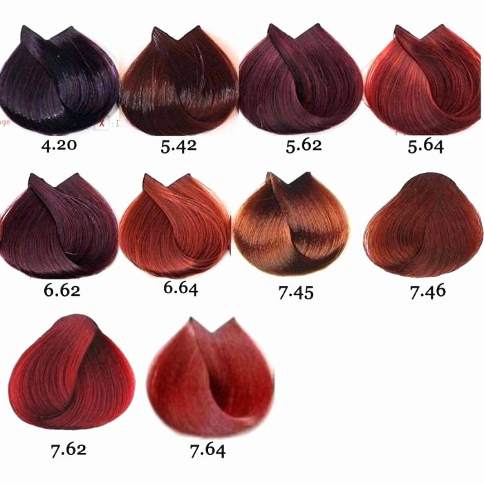 Adore Semi Permanent Hair Color Chart Inspirational Adore Hair Color Copper Brown