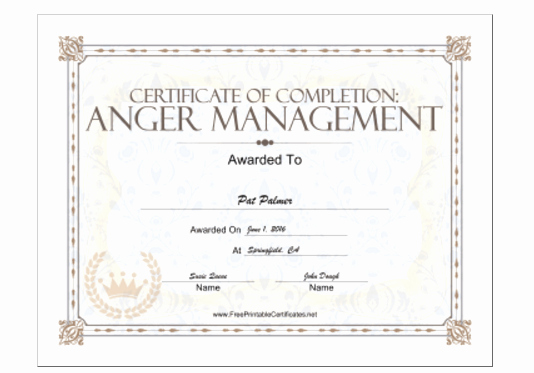 Anger Management Certificate Of Completion Template Lovely 18 Free Certificate Of Pletion Templates