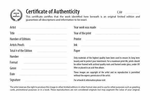 Art Certificate Of Authenticity Template Lovely Certificate Of Authenticity Free Editable Template