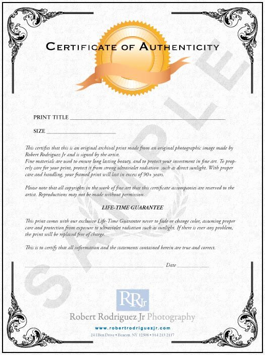 Art Certificate Of Authenticity Template Luxury Limited Edition Prints