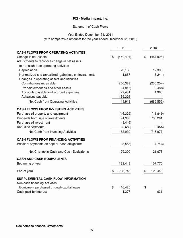 Audited Financial Statements Sample Beautiful Audited Financial Statements