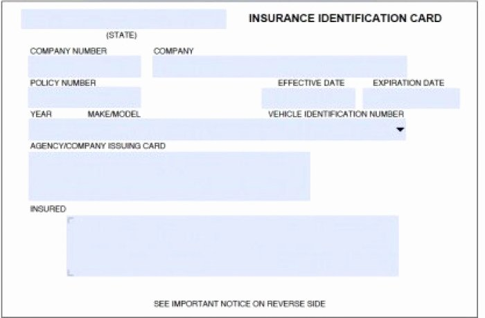 Auto Insurance Card Template Awesome Auto Insurance Card Template Psd Free
