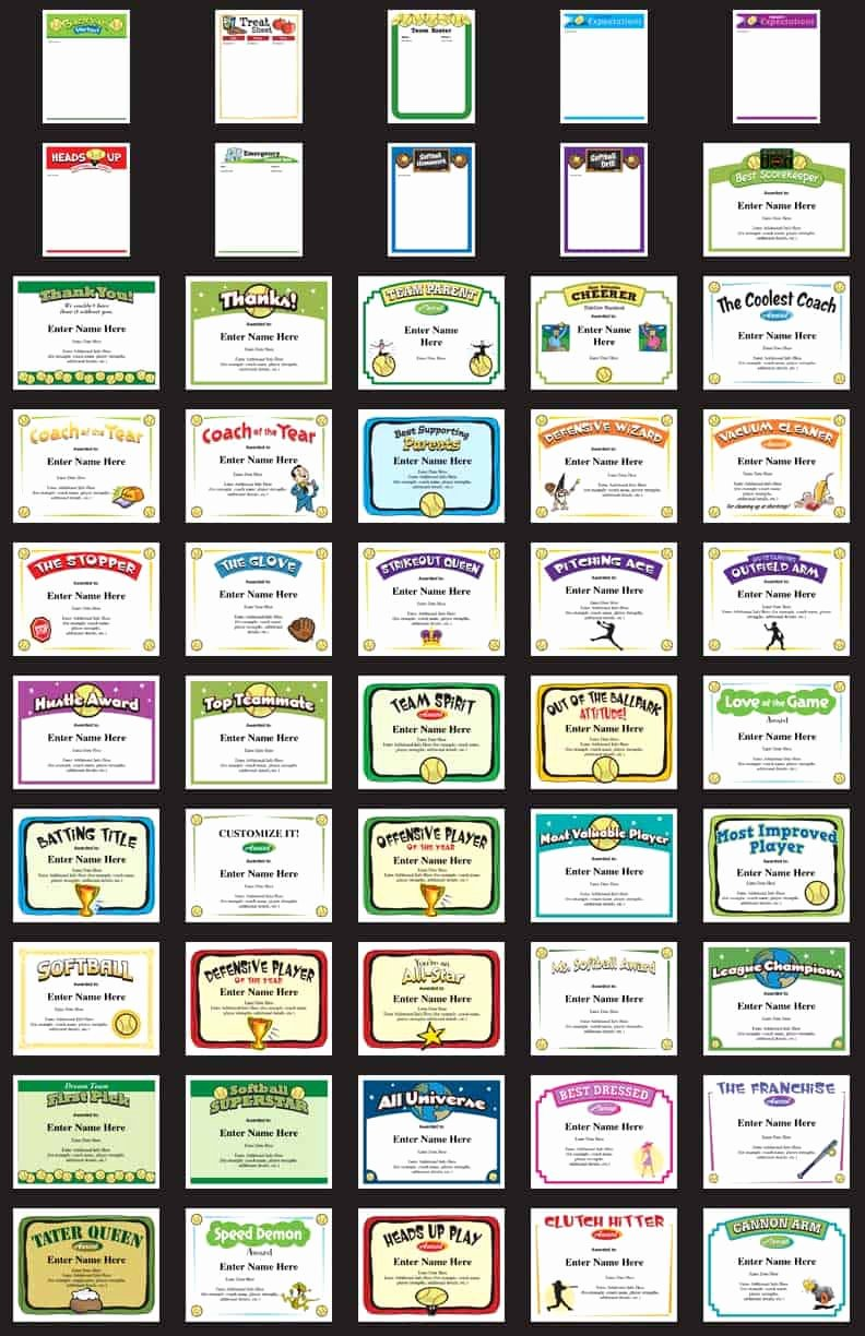 Award Titles for Sports Awesome softball Certificates Award Templates and Coaching forms