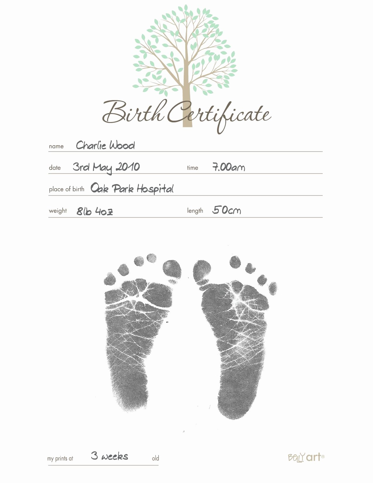 Baby Birth Certificate Template Fresh Belly Art Inkless Birth Certificate