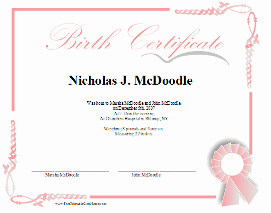Baby Death Certificate Template Elegant A Printable Birth Certificate In Shades Of Pink for A Baby