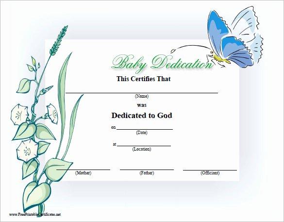 Baby Dedication Certificate Borders Unique Baby Dedication Certificate