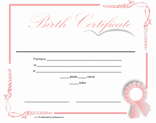 Baby Doll Birth Certificate Template Beautiful A Printable Birth Certificate In Shades Of Pink for A Baby