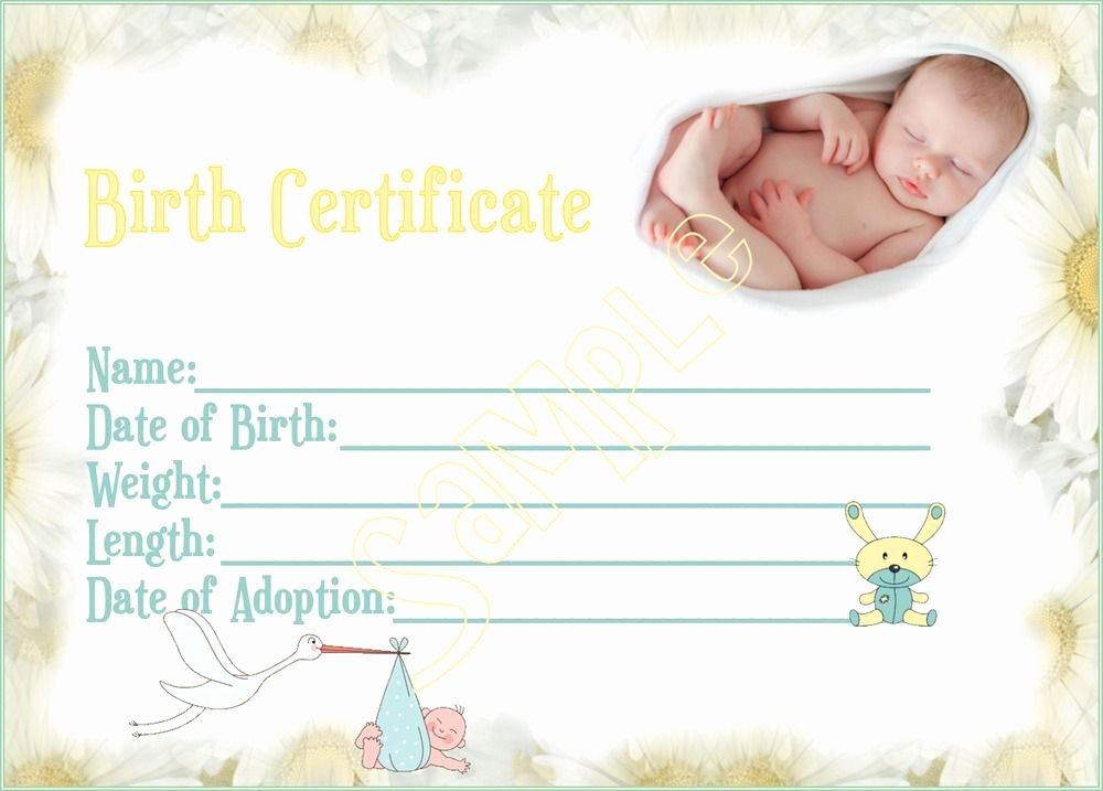 Baby Doll Birth Certificate Template New New Arrival Reborn Baby Birth Certificate You Print Baby