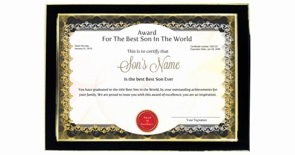 Best Boyfriend Ever Award Awesome Personalized Award Certificate for Worlds Best son with Frame