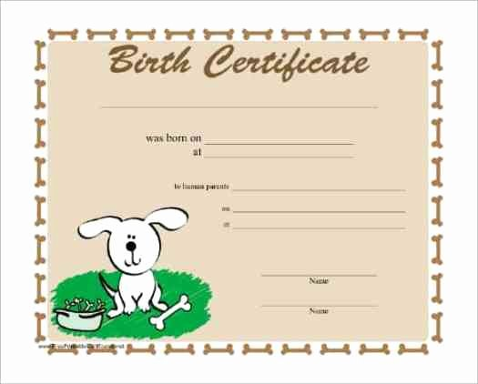Birth Certificate Template Doc Awesome 21 Free Birth Certificate Template Word Excel formats