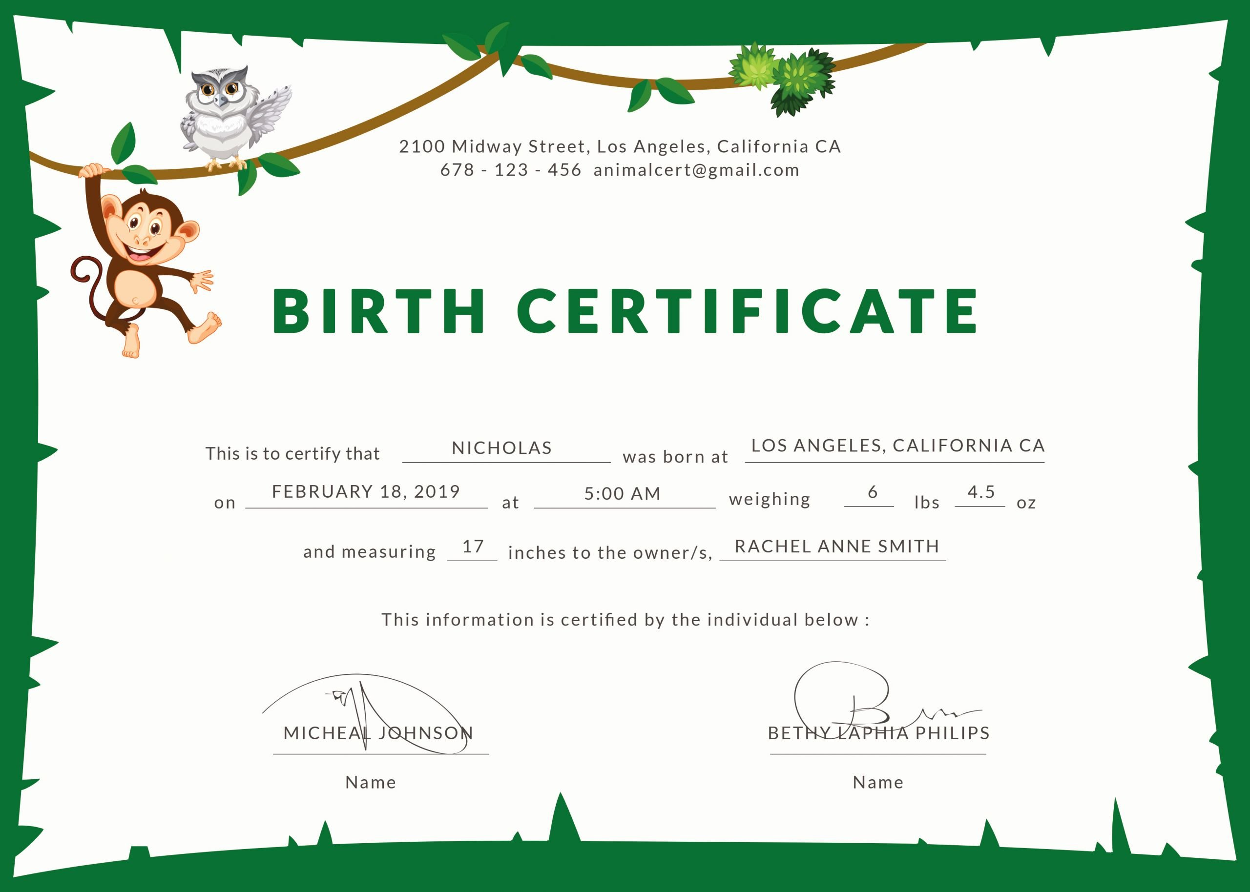 Birth Certificate Template Free Awesome Birth Certificate