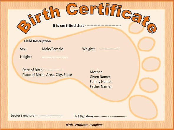 Birth Certificate Template with Footprints Inspirational Sample Birth Certificate 11 Free Documents In Word Pdf