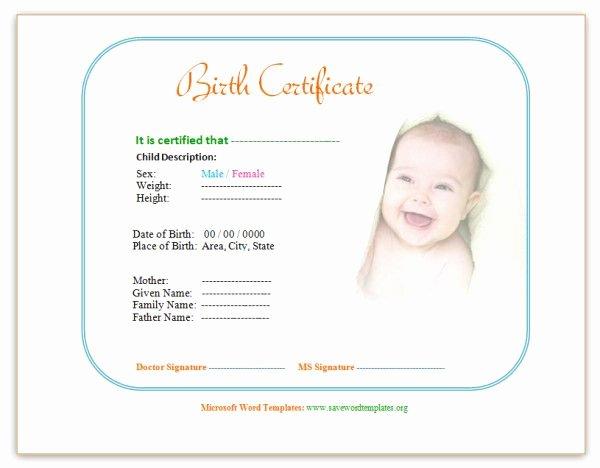 Birth Certificate Template Word Beautiful Birth Certificate Template Ewordtemplates