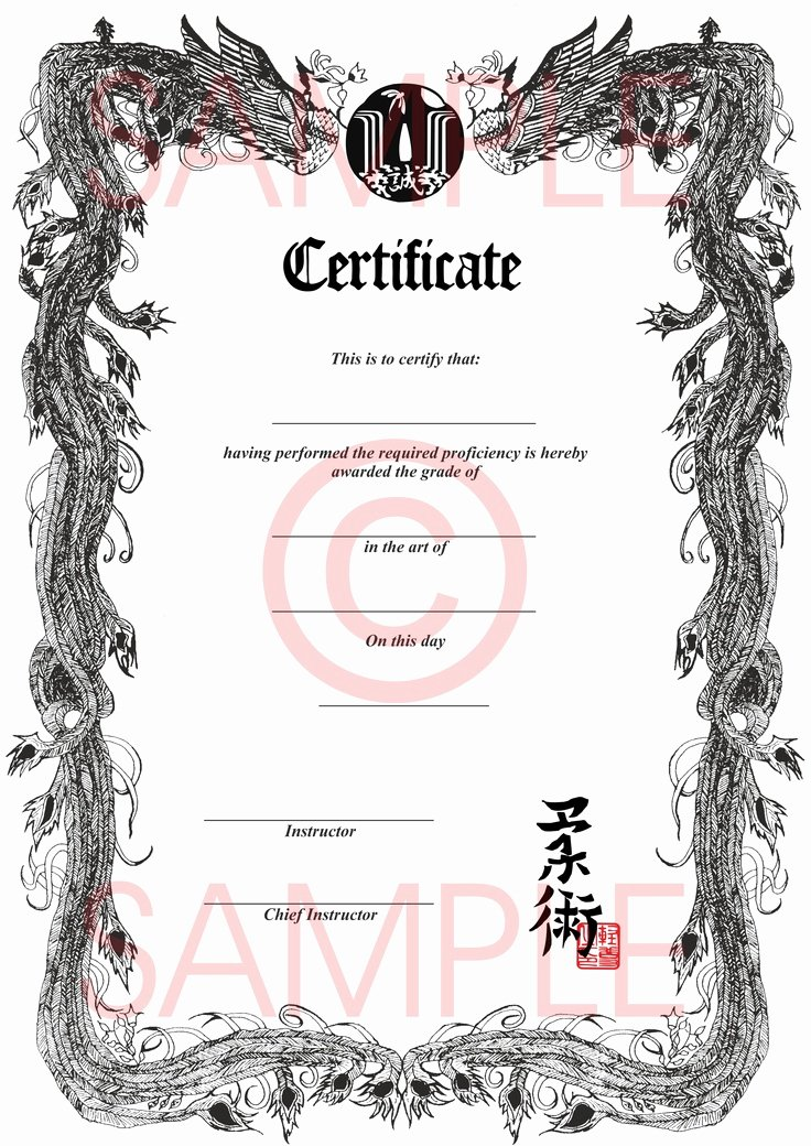 Black Belt Certificate Template Lovely Martial Arts Certificate Frames Racespace