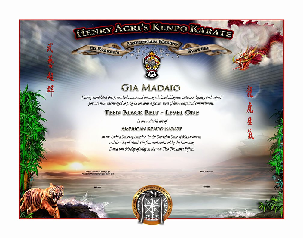 Black Belt Certificate Template Luxury Hakk Teen Black Belt Certificate Martial Arts Certificates