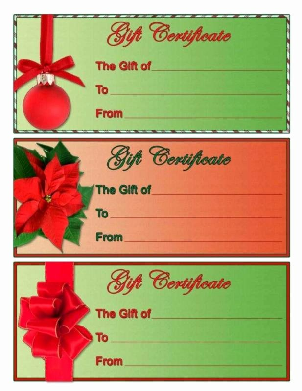 Blank Christmas Gift Certificate Template New Free Blank Certificate Templates