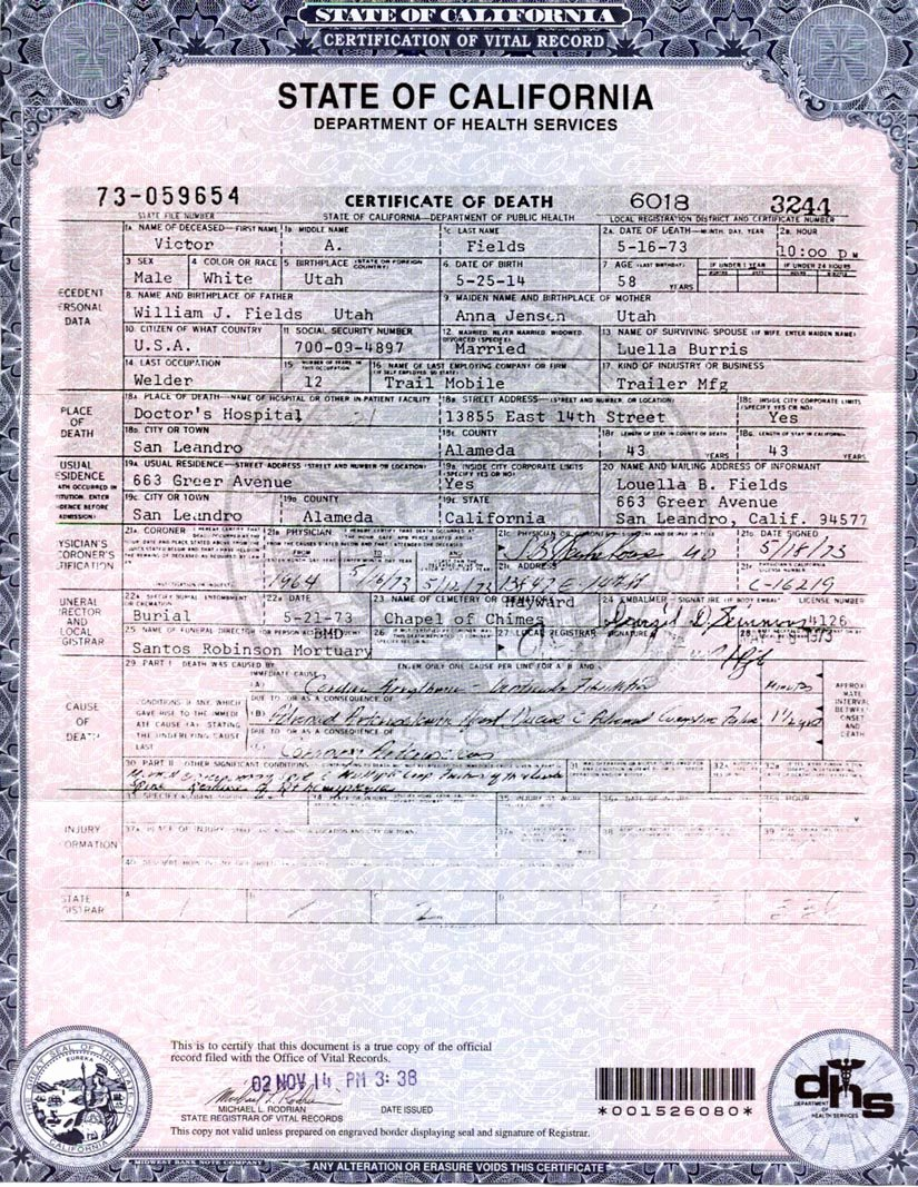 Blank Death Certificate Template Awesome Making A Point – Part 3