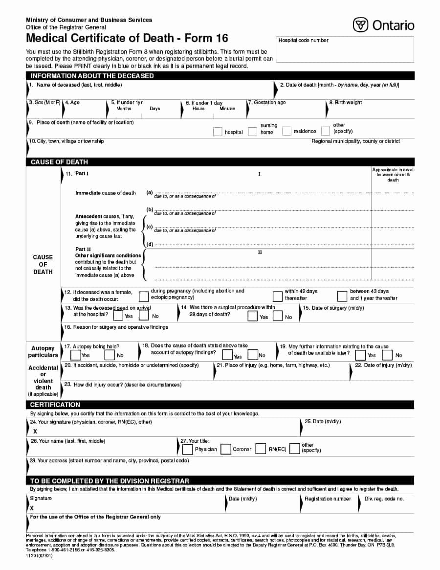 Blank Death Certificate Template Best Of 37 Blank Death Certificate Templates [ Free]