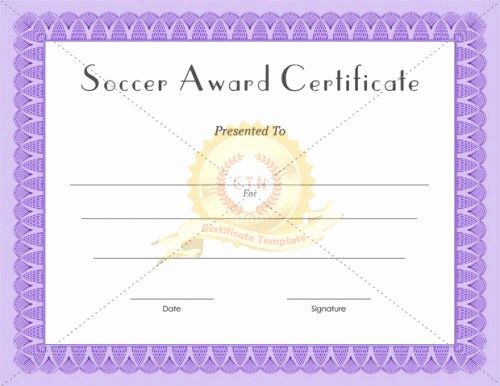 Blank Purple Heart Certificate New 1000 Images About Award Certificate Template On Pinterest