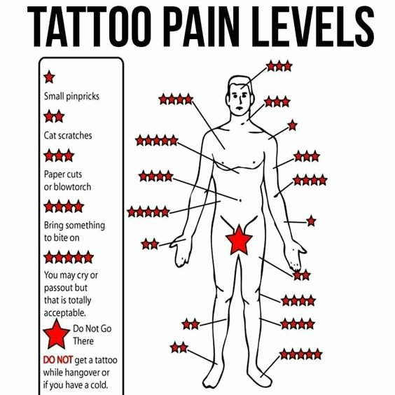 Body Piercing Pain Chart Lovely Pinterest • the World's Catalog Of Ideas