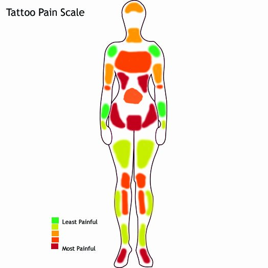 Body Piercing Pain Chart New 19 Best Images About Pain Charts How Much Does It Hurt