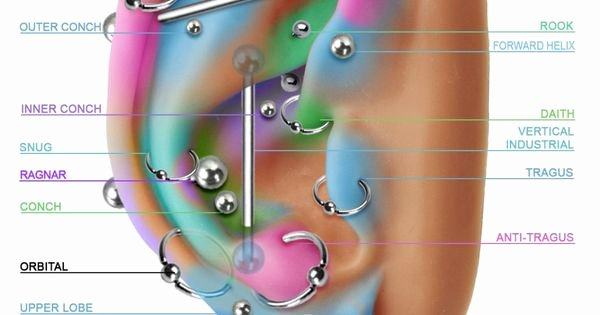 Body Piercing Pain Chart New Best Prices for Body and Facial Piercings In Stoke On