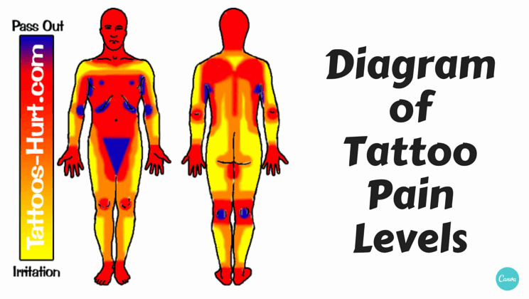 Body Piercing Pain Scale Beautiful Tattoo Pain Chart Google Search Tattoos