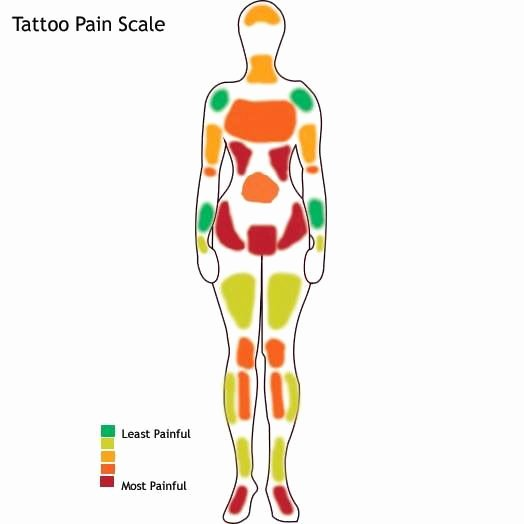 Body Piercing Pain Scale Unique Pain Scale Tattoos & Piercings