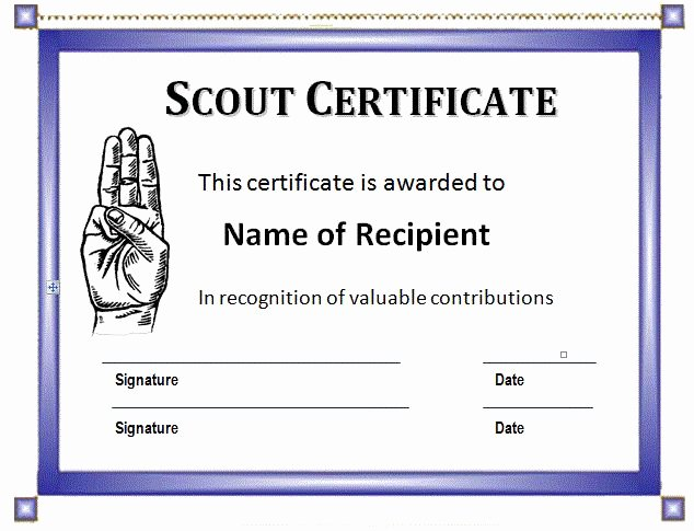Boy Scout Certificate Of Appreciation Templates Elegant Pinterest • the World's Catalog Of Ideas