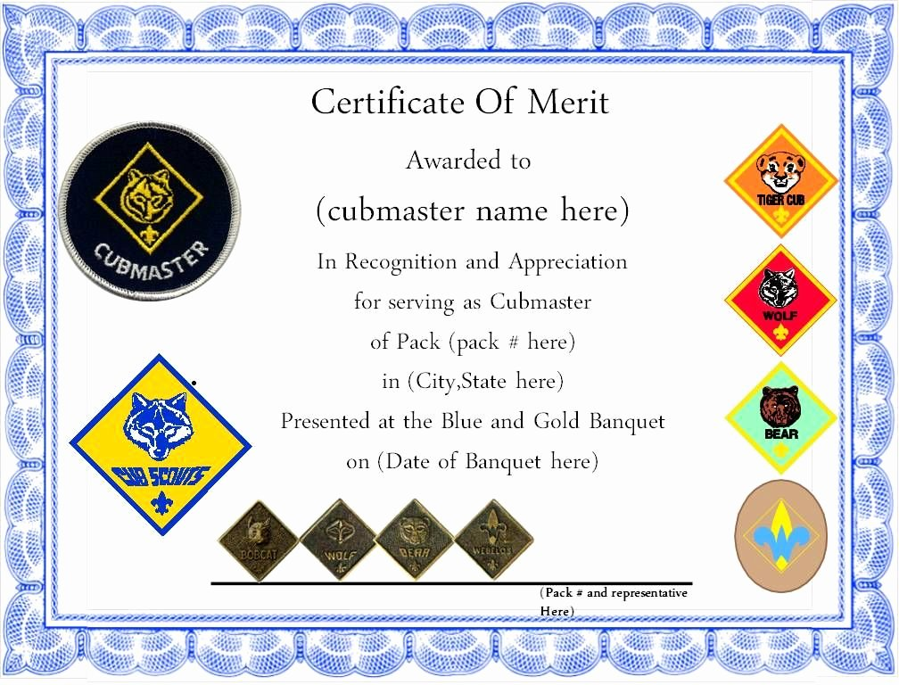 Boy Scout Certificate Of Appreciation Templates Inspirational Pin On Scouts