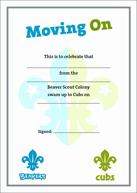 Boy Scout Certificate Template Fresh 18 Best Beaver Scouts Certificates Images On Pinterest