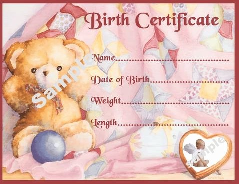 Build A Bear Birth Certificate Pdf Luxury Pink Teddy Birth Certificate Certificates 4 Reborn Fake