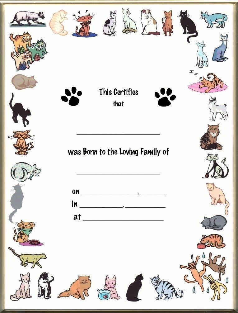Build A Bear Birth Certificate Template Blank Fresh Pet Birth Certificate