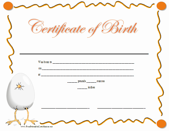 Build A Bear Birth Certificate Template Elegant A Fun Printable Birth Certificate with A Graphic Of A Baby