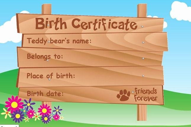 Build A Bear Certificate Maker New All Teddy Bears E with A Birth Certificate to Fill Out