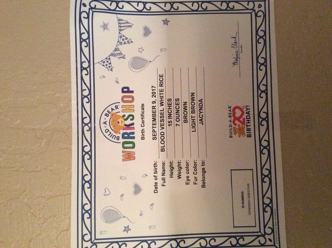 Build A Bear Certificate Template Luxury 3 Ways to Make A Teddy Bear Birth Certificate Wikihow