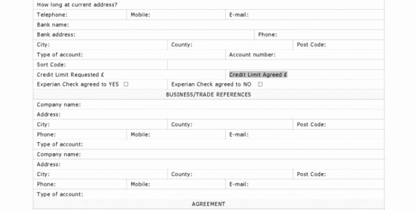 Business Credit Reference form Beautiful Business Credit Reference form Business form Standard